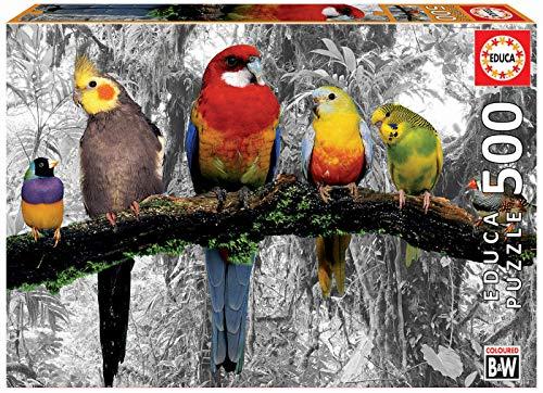 Educa Serie Coloured Bw Puzzle Colore Vario 17984 0