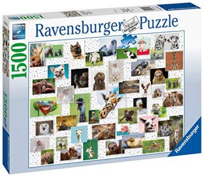 Ravensburger Funny Animals Collage Di Animali Divertenti Puzzle 1500 Pezzi Relax Puzzles Da Adulti Dimensione 80x60 Cm Stampa Di Alta Qualita Animali 0 0