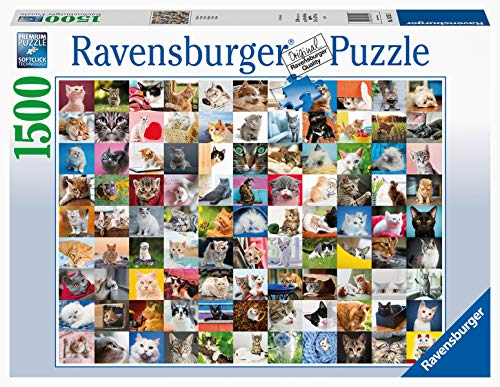 Ravensburger Puzzle Animali 99 Gatti Puzzle 1500 Pezzi Relax Puzzles Da Adulti Dimensione 80x60 Cm Stampa Di Alta Qualita Animali Cuccioli Collage 0
