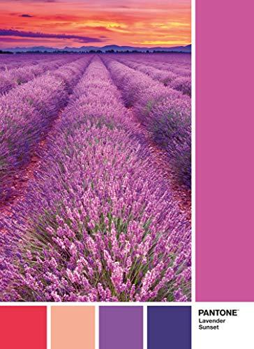 Clementoni Pantone Puzzle Vivid Viola 1000 Pezzi Multicolore 39493 0 0