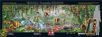 Educa Puzzle Colore Various 33600 Pezzi 16066 0